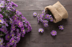 Πορφυρά λουλούδια κοπτών στο σάκο, στο ξύλινο υπόβαθρο Στοκ Εικόνες