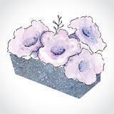 Πορφυρά λουλούδια στο πέτρινο δοχείο Στοκ Φωτογραφία