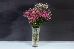 Πορφυρά λουλούδια χρυσάνθεμων ανθοδεσμών στο σκοτεινό υπόβαθρο Στοκ Εικόνα