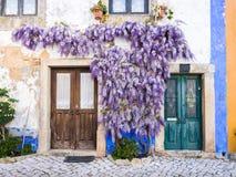 Πορφυρές αυξανόμενες arounf πόρτες εγκαταστάσεων wisteria ενός παλαιού σπιτιού Po Στοκ εικόνα με δικαίωμα ελεύθερης χρήσης