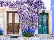 Πορφυρές αυξανόμενες arounf πόρτες εγκαταστάσεων wisteria ενός παλαιού σπιτιού Po Στοκ Εικόνες