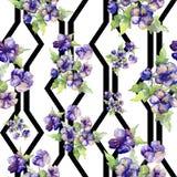 Πορφυρή ανθοδέσμη Watercolor του λουλουδιού viola Floral βοτανικό λουλούδι Άνευ ραφής πρότυπο ανασκόπησης απεικόνιση αποθεμάτων