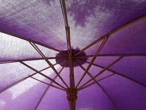 πορφυρή ομπρέλα Στοκ Εικόνες