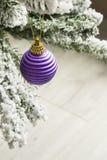 Πορφυρή σφαίρα Χριστουγέννων Στοκ φωτογραφία με δικαίωμα ελεύθερης χρήσης