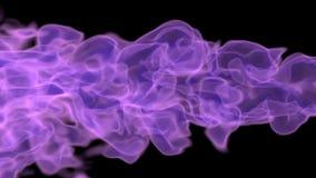 Πορφυρή φλόγα στο Μαύρο απόθεμα βίντεο