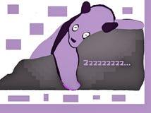 Πορφυροί ύπνοι της Panda Στοκ Εικόνες