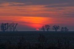 Πορφυρός-κόκκινο ηλιοβασίλεμα κάτω από τον τομέα και το δάσος Στοκ Εικόνες