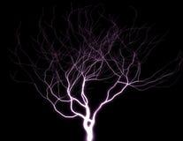 Πορφυρό δέντρο αστραπής ελεύθερη απεικόνιση δικαιώματος