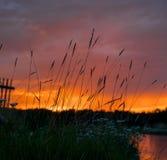 Πορφυρό ηλιοβασίλεμα στον ποταμό pechora Στοκ φωτογραφίες με δικαίωμα ελεύθερης χρήσης
