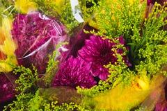 Πορφυρό και κίτρινο λουλούδι στο κατάστημα Στοκ φωτογραφία με δικαίωμα ελεύθερης χρήσης