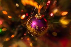 Πορφυρό μπιχλιμπίδι Χριστουγέννων στο χριστουγεννιάτικο δέντρο Στοκ φωτογραφίες με δικαίωμα ελεύθερης χρήσης