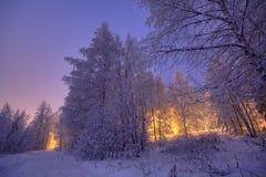 Πορφυρό χειμερινό τοπίο Στοκ εικόνα με δικαίωμα ελεύθερης χρήσης