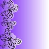πορφύρα πεταλούδων απεικόνιση αποθεμάτων