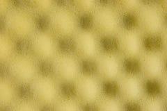 πορώδες σφουγγάρι ανασ&kap Στοκ εικόνες με δικαίωμα ελεύθερης χρήσης
