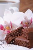 Πορώδης σοκολάτα και άσπρη κατακόρυφος λουλουδιών ορχιδεών μακρο. Στοκ φωτογραφία με δικαίωμα ελεύθερης χρήσης
