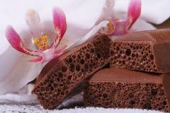 Πορώδης σοκολάτα και άσπρο λουλούδι ορχιδεών Στοκ Εικόνες