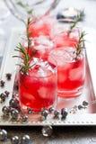 Ποτά για τα Χριστούγεννα Στοκ Εικόνα