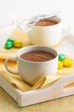 ποτά σοκολάτας Στοκ Φωτογραφίες