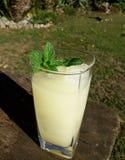 Ποτήρι της εγχώριας λεμονάδας με τον πάγο και τη μέντα στοκ εικόνα με δικαίωμα ελεύθερης χρήσης