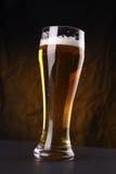 Ποτήρι της ελαφριάς μπύρας Στοκ Εικόνες