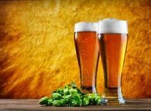 Ποτήρι της μπύρας Στοκ Εικόνα