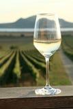 Ποτήρι του άσπρου κρασιού Στοκ εικόνες με δικαίωμα ελεύθερης χρήσης