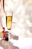 Ποτήρι του λαμπιρίζοντας άσπρων κρασιού και του μπουκαλιού στην επιτραπέζια κατακόρυφο Στοκ Φωτογραφία