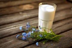 Ποτήρι του γάλακτος στην ανασκόπηση φύσης Στοκ εικόνες με δικαίωμα ελεύθερης χρήσης