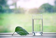 Ποτήρι του καθαρού φυσικού νερού και του πράσινου φύλλου στοκ εικόνα