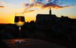 Ποτήρι του κρασιού Στοκ Εικόνες