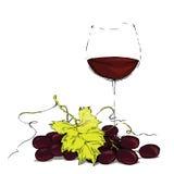 Ποτήρι του κόκκινου κρασιού με τα σταφύλια Στοκ Εικόνες