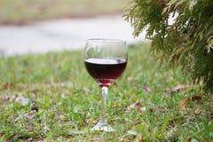 Ποτήρι του κόκκινου κρασιού στην πράσινη χλόη Στοκ εικόνα με δικαίωμα ελεύθερης χρήσης