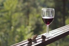 Ποτήρι του κόκκινου κρασιού Στοκ εικόνες με δικαίωμα ελεύθερης χρήσης