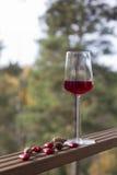 Ποτήρι του κόκκινου κρασιού Στοκ Φωτογραφία