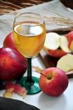 Ποτήρι του κόκκινου χυμού της Apple Στοκ εικόνα με δικαίωμα ελεύθερης χρήσης