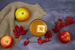 Ποτήρι του μηλίτη Μηλίτης και φρούτα της Apple Ποτό της Apple, κοκτέιλ, ποτό, χυμός Στοκ φωτογραφίες με δικαίωμα ελεύθερης χρήσης