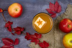 Ποτήρι του μηλίτη Μηλίτης και φρούτα της Apple Ποτό της Apple, κοκτέιλ, ποτό, χυμός Στοκ εικόνες με δικαίωμα ελεύθερης χρήσης