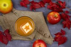Ποτήρι του μηλίτη Μηλίτης και φρούτα της Apple Ποτό της Apple, κοκτέιλ, ποτό, χυμός Στοκ φωτογραφία με δικαίωμα ελεύθερης χρήσης