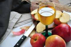 Ποτήρι του φρέσκου χυμού της Apple με τη φρέσκια Apple Στοκ Φωτογραφία