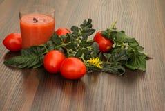 Ποτήρι του χυμού ντοματών και της ντομάτας με τα φύλλα Στοκ Εικόνες