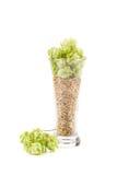 Ποτήρι των φρέσκων πράσινων λυκίσκων και του κριθαριού Στοκ Φωτογραφίες
