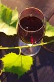 Ποτήρι των φύλλων κόκκινου κρασιού και σταφυλιών σε μια ξύλινη επιφάνεια Στοκ εικόνες με δικαίωμα ελεύθερης χρήσης