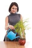ποτίζοντας γυναίκα φυτών Στοκ εικόνες με δικαίωμα ελεύθερης χρήσης