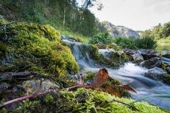 Ποταμάκι νεράιδων Στοκ Φωτογραφίες