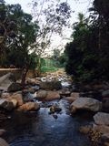 Ποταμάκι φυσικό στη ζούγκλα Ταϊλάνδη Στοκ Φωτογραφίες
