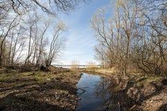 Ποταμός άνοιξη Στοκ Φωτογραφίες