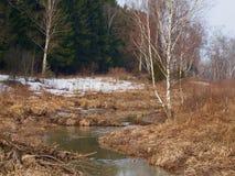 Ποταμός άνοιξη Στοκ εικόνες με δικαίωμα ελεύθερης χρήσης