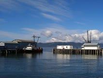 ποταμός αλιείας της Κολ& Στοκ Εικόνες