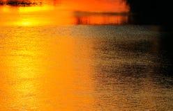 Ποταμός αντανάκλασης και δέντρο σκιών στην όμορφη φύση ηλιοβασιλέματος νερού Στοκ φωτογραφία με δικαίωμα ελεύθερης χρήσης