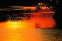 Ποταμός αντανάκλασης και δέντρο σκιών στην όμορφη φύση ηλιοβασιλέματος νερού Στοκ Εικόνα